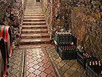 Тур в Закарпатті з дегустацією вин