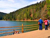 Озеро Синевир, панорама. в екскурсійному турі в Карпати