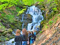 Водопад Шипот, село Пилипець в Карпатах, тур з екскурсіями