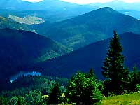 Тур в Карпати, Закарпаття влітку, восени, навесні - озеро Синевир
