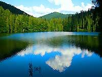Поїздка в Карпати, відпочинок в горах
