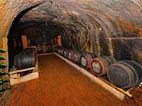 Тур відпочинок в Закарпатті з відвідуванням винних підвалів Берегово