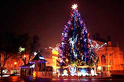 Тур на Новий рік в Карпати