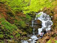 Поїздка на Синевир з відвідуванням водоспаду Шипот